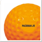 Paceman official cricket ball pack