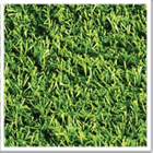 Scanabowl B Non Turf Cricket Matting
