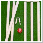 Wooden Cricket Match Standard Stumps